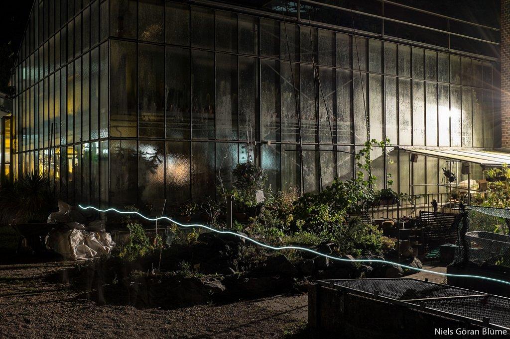 Botanischer Garten Darmstadt - Nacht der Lichter